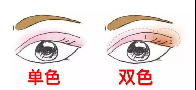 TST四色眼影|四色眼影到底该怎么用、怎么玩儿?
